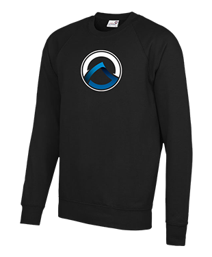 Arion Gaming - Raglan Sweatshirt