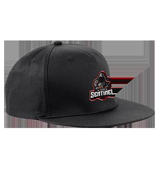 Team Sentinel - 5 Panel Snapback Rapper Cap