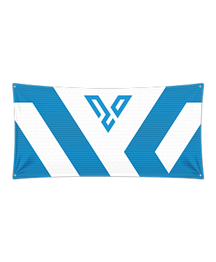 VLEX Esports - Wall Flag