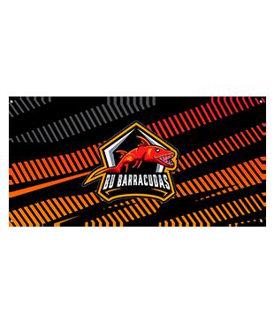 BU Barracuddas - Wall Flag