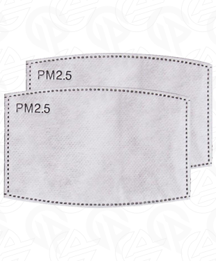 PM2.5 Filter (Pack of 2)