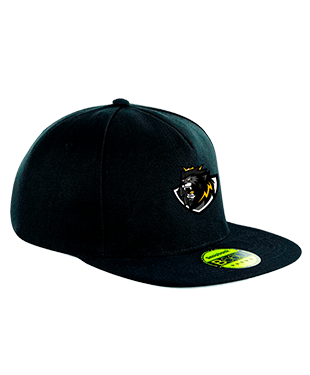 Team Halogen - Snapback Cap