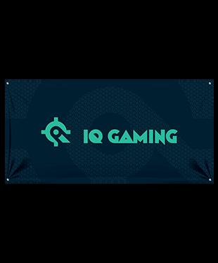 IQ Gaming - Wall Flag
