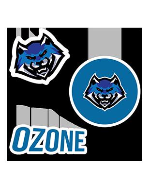Ozone Esports - Sticker Pack (3 x Stickers)