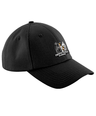 TwoPictures Gaming - Ultimate 6 Panel Cap