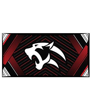 ZeRo Esports - Wall Flag